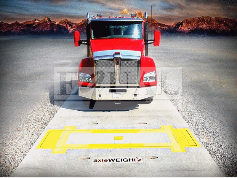 axleWEIGHr – In Motion Axle Scale