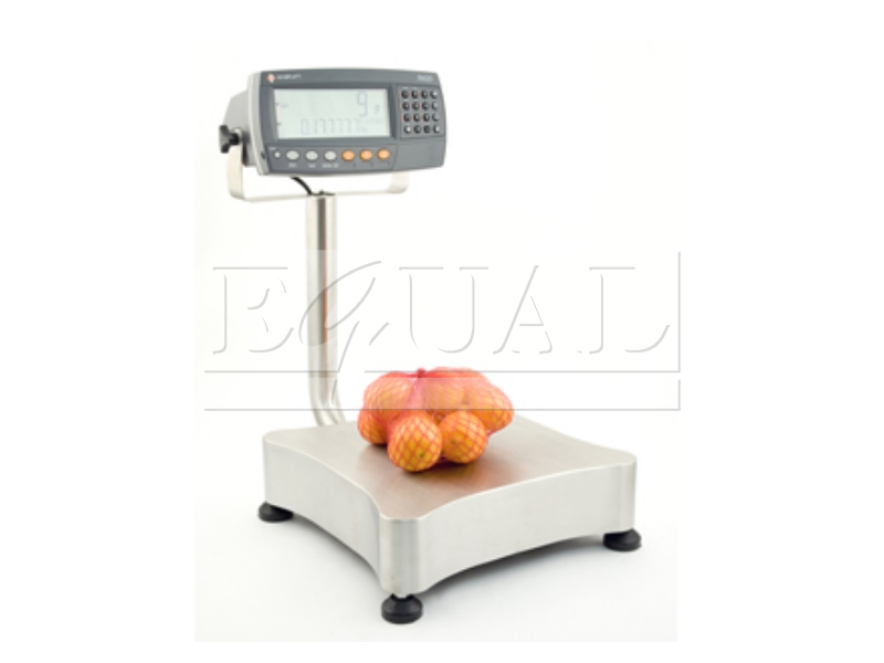 Stainless Steel R420 Bench Scale